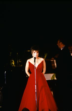 "The one and only Liza Minelli ""wows' guests (in 1988) with a special performance"
